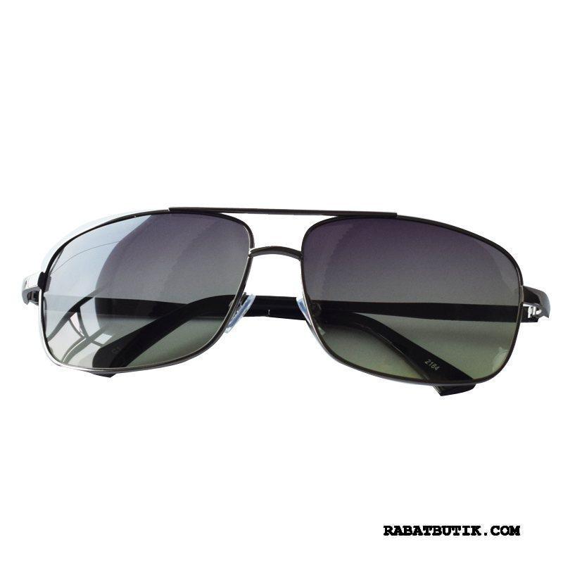 Solbriller Herre Online Multifunktions Elegante Køre Tudse Trend Sort Guld